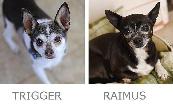 trigger-and-raimus