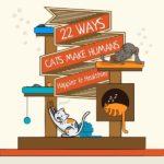 Ways Cats Make Life Better