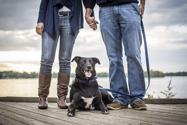engagement photos with dog, dog on boardwalk, lake in background