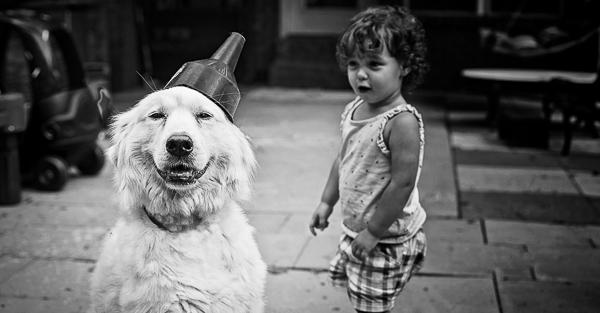 lifestyle-dog-photography-14