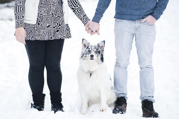 couple holding hands with dog, Aussie, winter dog photography