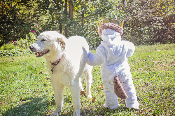 Great Pyr standing with toddler wearing Max, Where The Wild Things Are costume