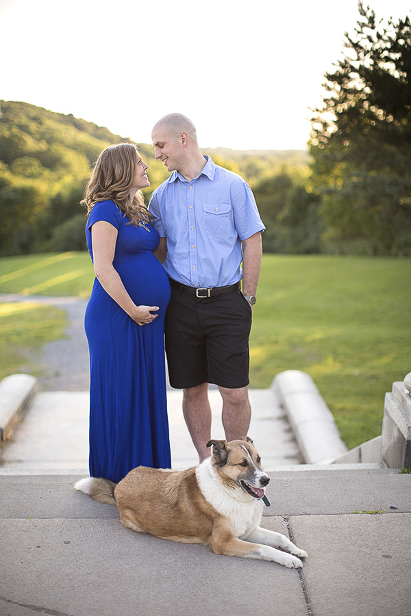 maternity session with Collie-Shepherd mix