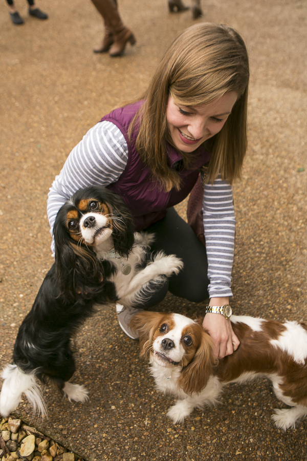 woman petting two Cavaliers