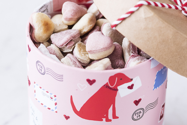 homemade heart shaped dog treats in cute Valentine box