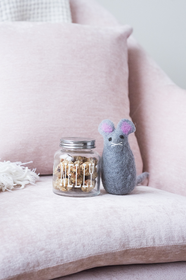 Love Your Pet Day, treats and toy mouse for dog