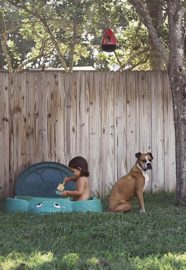 Boxer and toddler playing in sandbox, backyard fun dog and toddler, BFFS
