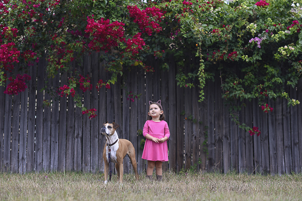 Boxer and little girl in pink dress, cat ears standing outside