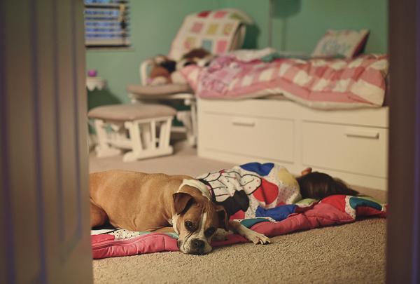 toddler girl and Boxer sleeping on floor