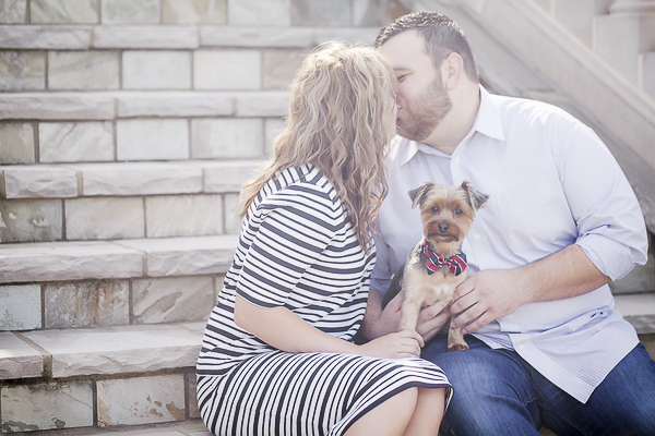 Yorkie wearing striped bow tie, engagement session pictures