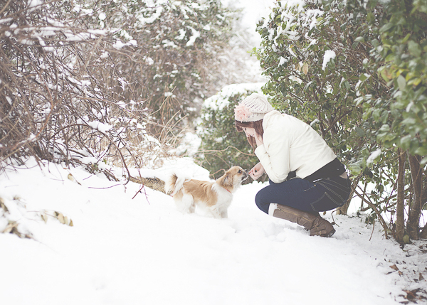 small Peke mix and woman outside on snowy day