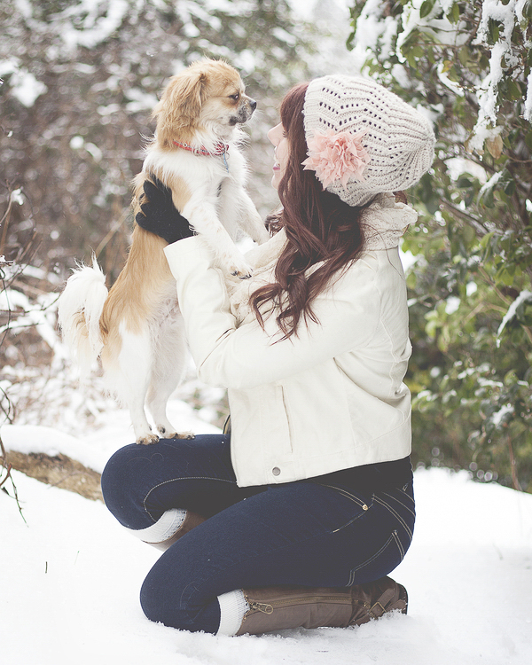 small dog looking at woman in white coat and hat, winter dog photos