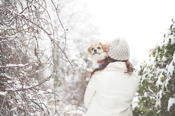 small dog looking over woman's shoulder, winter white, snowy day