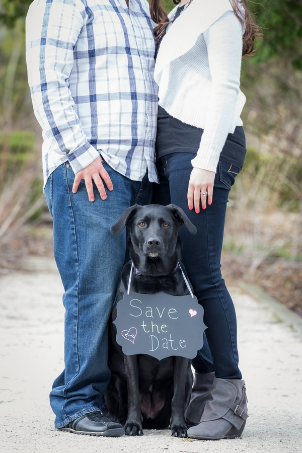 black Lab holding Save the Date Sign
