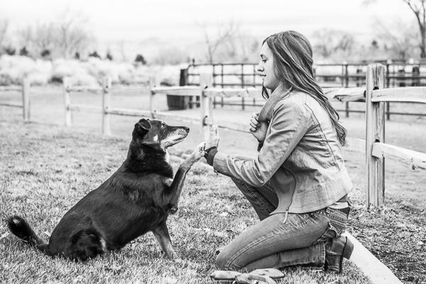 dog high fiving woman, human dog bond, heart dog