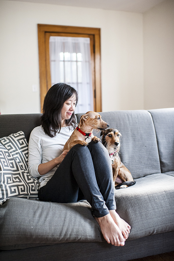 woman sitting with small dogs on sofa, on location dog photography