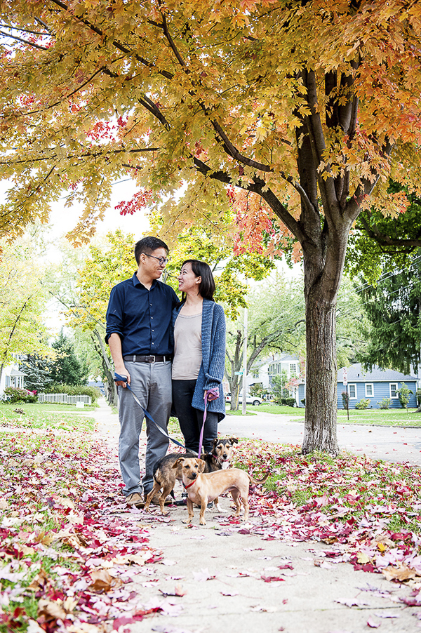couple, dogs on sidewalk, gorgeous fall leaves