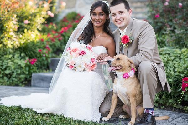 bride, groom, and wedding dog, dog in floral collar, best dog