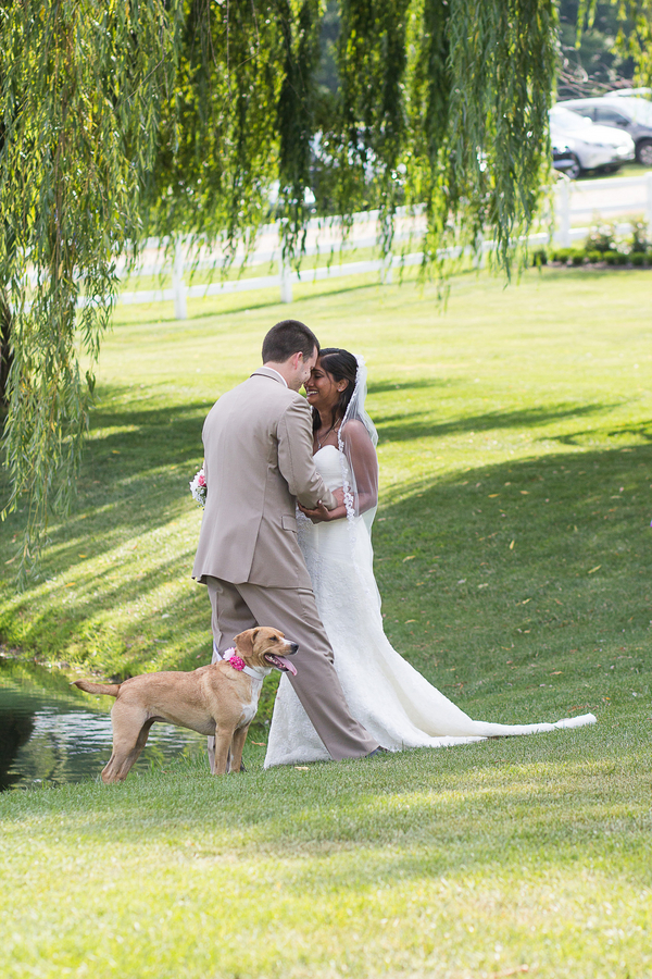 bride, groom, dog next to willow tree