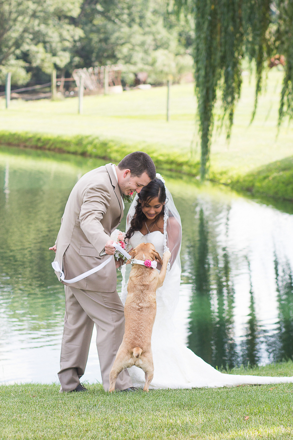 groom, happy dog seeing bride on wedding day, first look photos with dog,