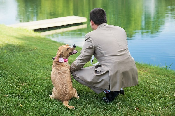 brown dog wearing floral collar and groom waiting to see bride, first look with dog