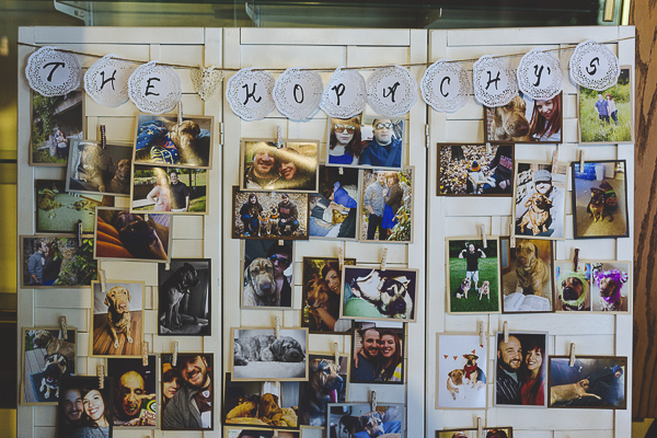 photo display at wedding reception, ways to include dogs at a wedding
