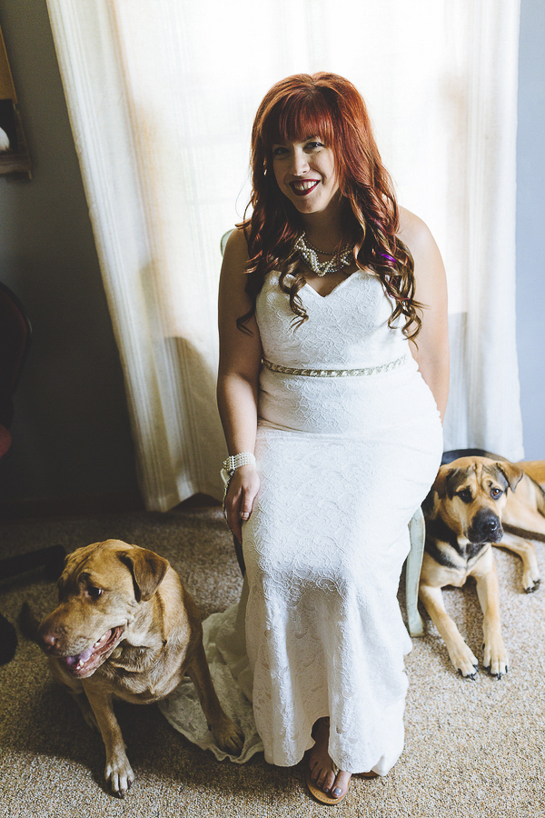 bride and dogs