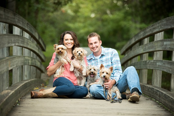 couple and 4 Yorkies sitting on small wooden bridge
