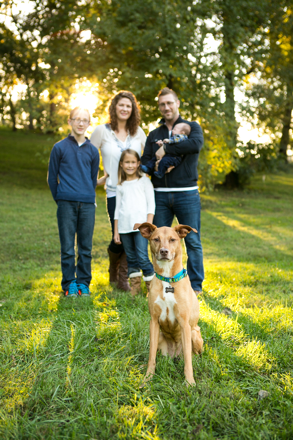 brown dog and family, on location dog photography
