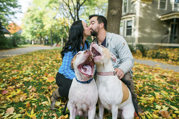 red nosed pit bulls and humans, fall engagement photos