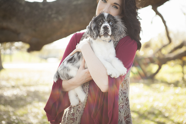 woman holding merle Cocker Spaniel puppy