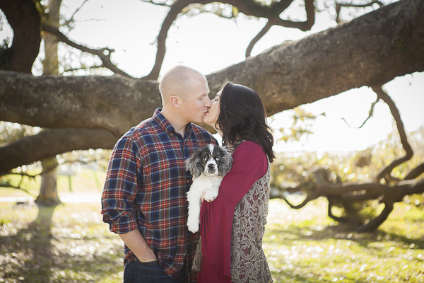 spaniel puppy and parents, Mississippi lifestyle photographer
