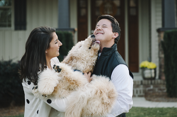 dog licking man's face, Golden Doodle