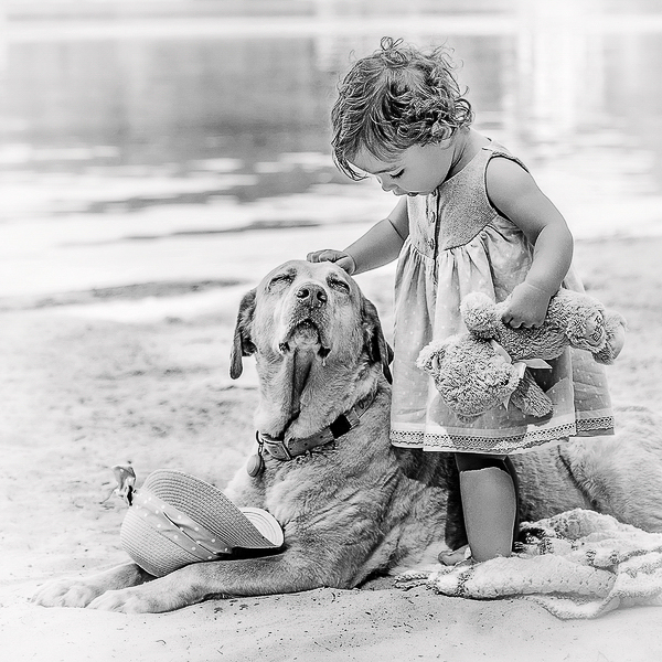little girl and dog on beach, yellow lab