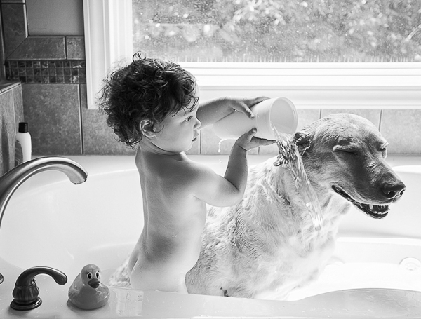 toddler washing dog in tub
