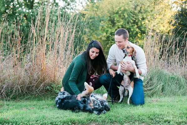 Australian Shepherd rolling on back, on location engagement photos,