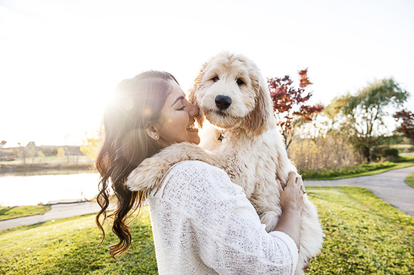 cute GoldenDoodle puppy in woman's arms, dogs are family, dog mom