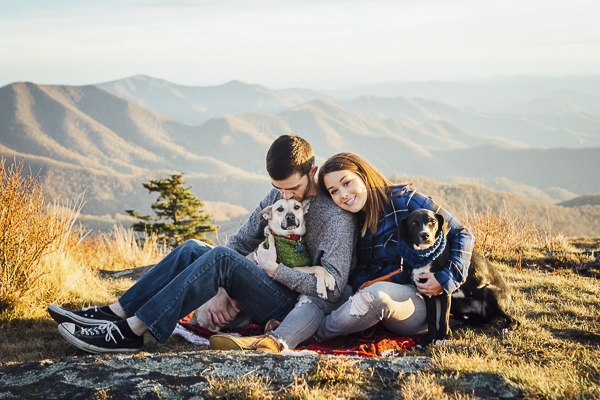 dogs are family, family portraits with dogs on Roan Mountain