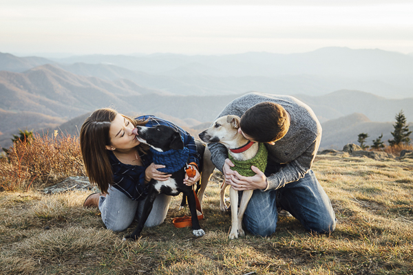 human-dog bond, couple kissing their fur babies on mountain
