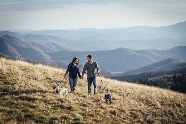 rescued dogs and their fur parents, Roan Mountain, on location dog photographer