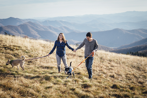 Hiking with dogs on Roan Mountain