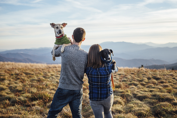 couple holding dogs on Roan Mountain