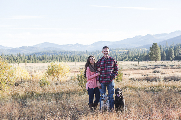 scenic engagement photos with dogs, Queensland heeler, lab, Hope Valley
