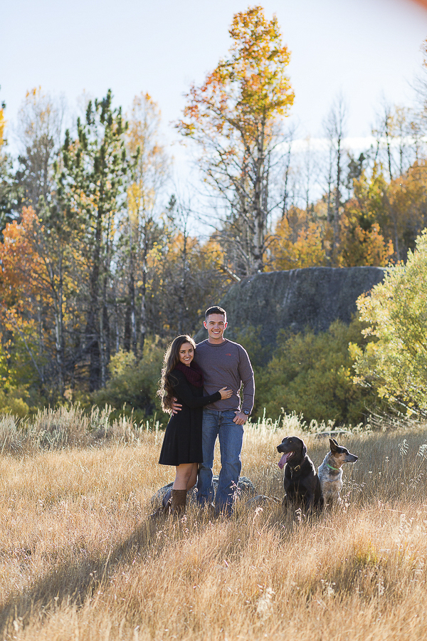 engaged couple in field with lab Queensland heeler, Hope Valley