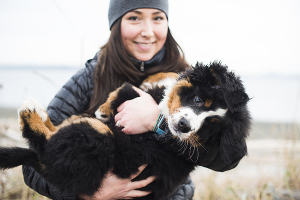 woman holding Bernese Mountain puppy on beach