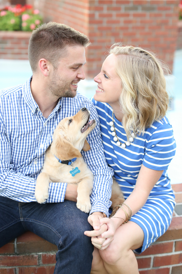 family photos with Golden Retriever puppy, couple and dog