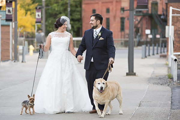 Yorkie, bride, groom, Yellow Lab walking, wedding dogs