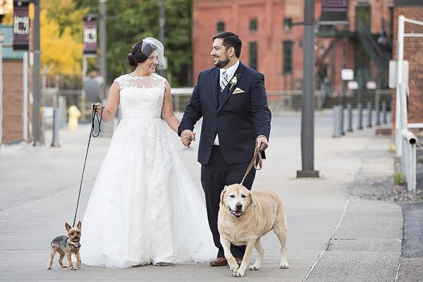Yorkie, bride, groom, Yellow Lab walking, wedding dogs