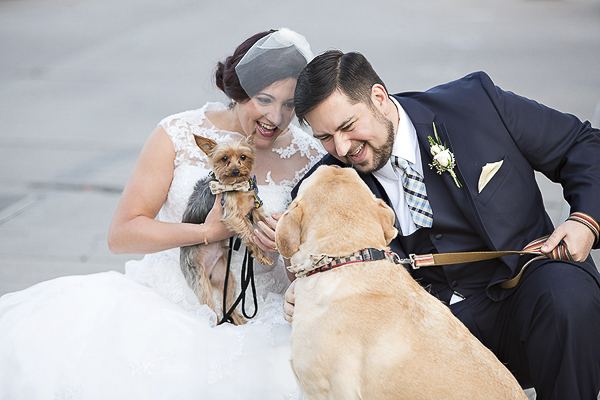 bride, groom and their dogs, Yorkie and Lab in wedding