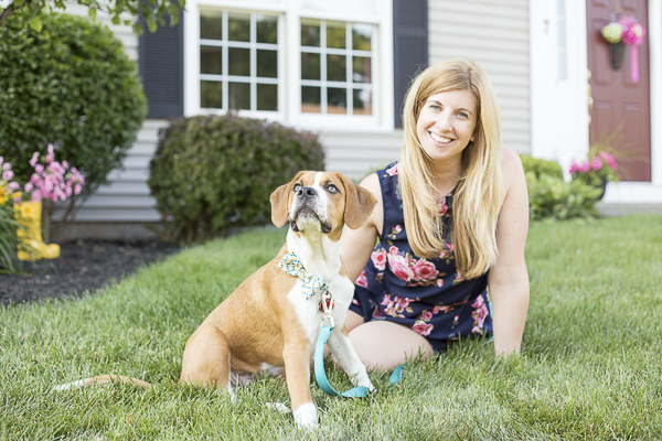 Beagle-Boxer puppy and blonde woman sitting in front yard